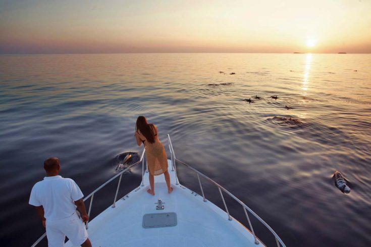 20_Dolphin-Cruise-Soneva-Fushi-Maldives-by-Dan-Kullberg