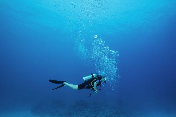 OO_RR_Diving__45A3589_MASTER_Small-1024x683