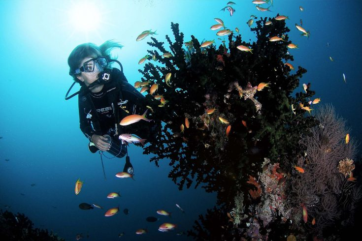 Scuba-Diving-Soneva-Fushi