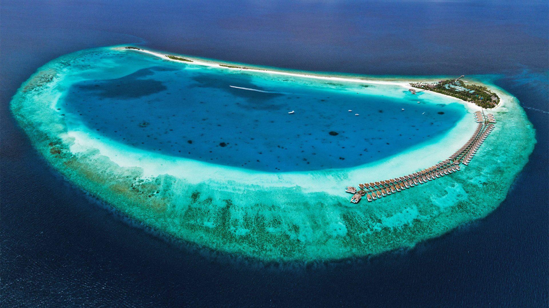 maldives-atoll-finolhu-reef-gallery