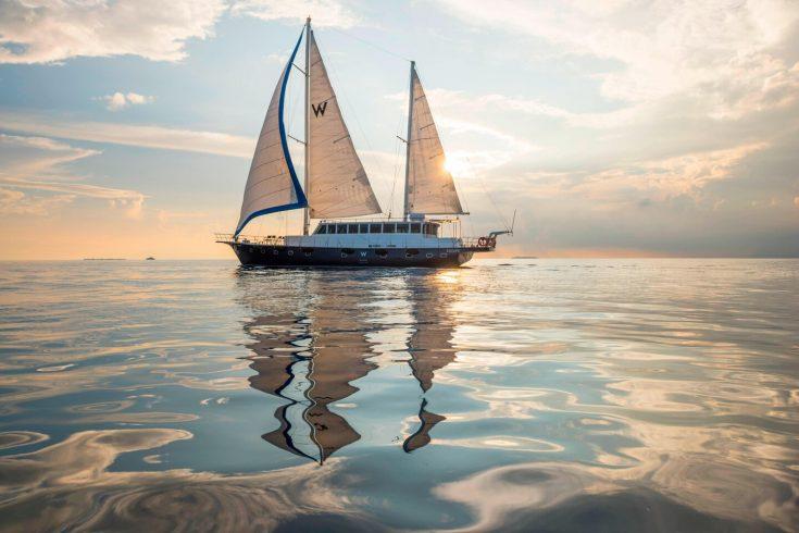 mlewh-cruise-4151-hor-clsc