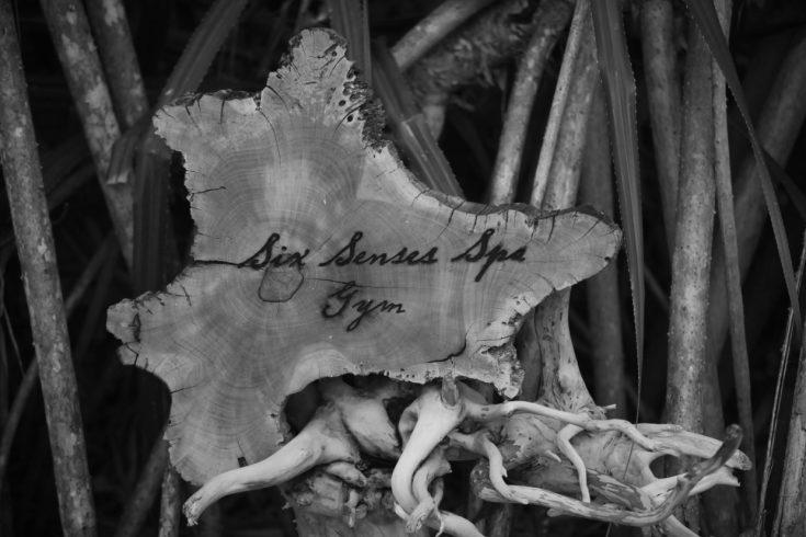 Six_Senses_Spa_Signage_[7450-LARGE]